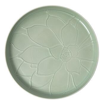 it's my home plateau Socculent, 34cm, vert/blanc